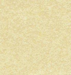 A4(210x 297mm), carta pergamena invecchiata, 170g/m², confezione da 50fogli.