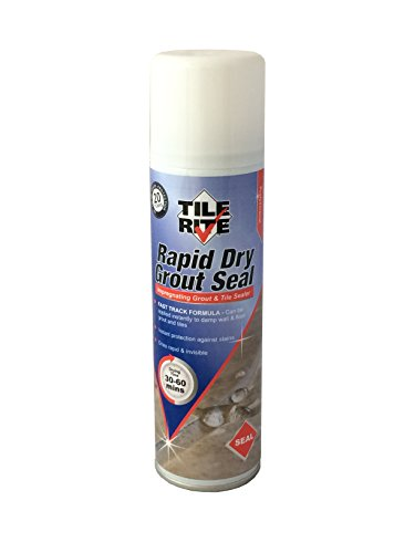 Tile Rite RDA339 Grout Seal Aerosol