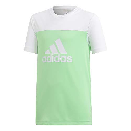 Adidas yb tr eq tee, t-shirt bambino, shock lime white, 5-6a