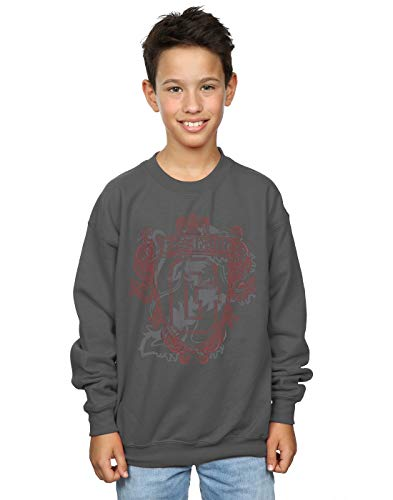 Harry Potter Jungen Gryffindor Lion Crest Sweatshirt Holzkohle 5-6 Years -