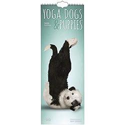 Yoga Dogs & Puppies 2020 Slimline Calendar