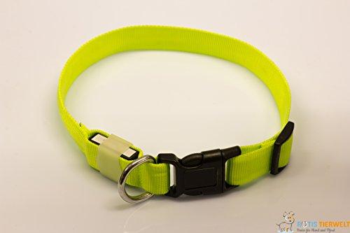 LED Leuchthalsband Basic 1 per USB aufladbar, Größe L, Grün - 3