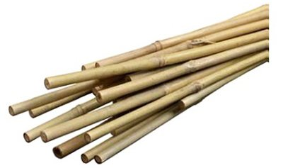 bond-manufacturing-co-bamboo-plant-stakes-2-ft-12-pk