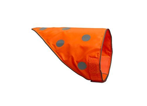 spot-the-dog-einfache-befestigung-bandana