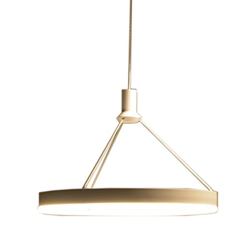 Kronleuchter Restaurant Lichter Runde Retro Einfache Kreative Persönlichkeit Nordic Fashion Warm Esszimmer Wohnzimmer LED (größe : 60 cm x 60 cm x 4 cm) -
