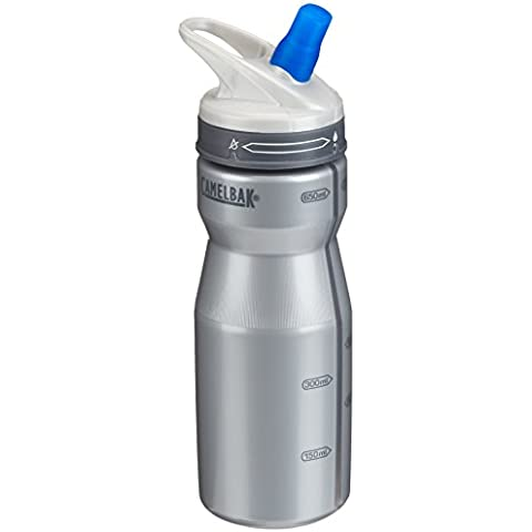 Camelbak Performance - Botella, color gris, 650 ml