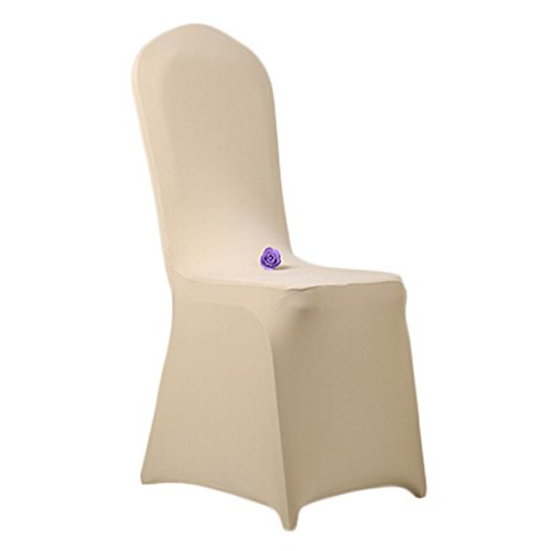 Honeyhome Universale Stuhlhusse aus elastische Spandex Stretch fuer runde Stuhllehnen Champagne 8 Stk