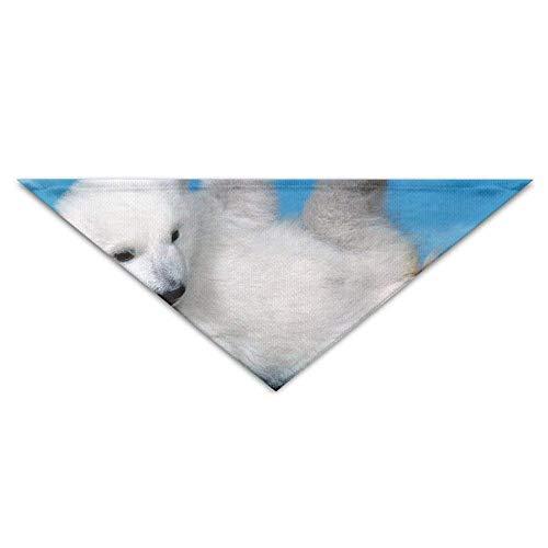 Cute Kostüm Polar Bear - Gxdchfj Pet Triangle Banna Cute Polar Bear Baby Washable Dog Puppy Scarf Bib Babys Neckerchief Accessories