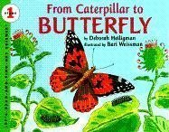 From Caterpillar to Butterfly (Let's-Read-and-Find-Out Science 1) by Heiligman, Deborah [Hardcover(1996/4/26)]