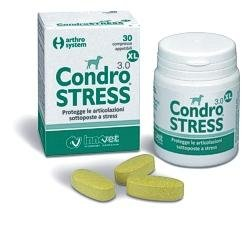 CONDROSTRESS XL 30CPR
