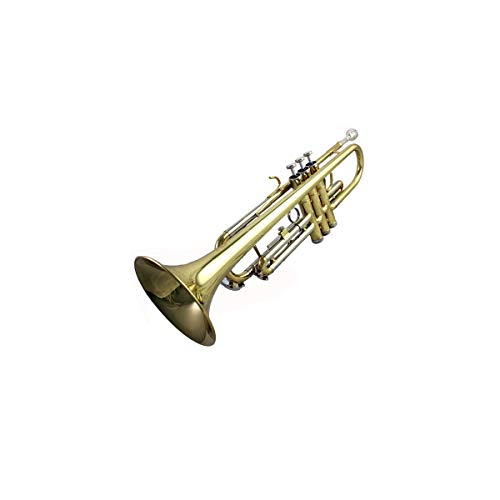 Haoyushangmao Leistungsniveau High-End-Profi-Standard-Trompete, geeignet für Anfänger, Solo- und Band-Performances, Tonart #A (BB), Messing / Phosphorbronze-Material, schöner Ton ( Color : Gold )