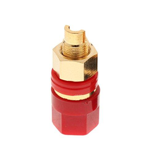 D DOLITY Verstärker-Stecker Bananenstecker Messing vergoldet Lautsprecher-Terminal Gold Plated Audio-Lautsprecher-Binding Post Gold Plated Terminals