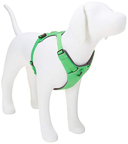 Ruffwear Ganztags-Hundegeschirr, Große bis sehr große Hunderassen, Größenverstellbar, Größe: L/XL, Grün, Front Range Geschirr, 30501-345LL1