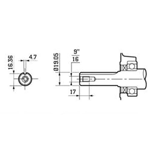 Zoom IMG-3 eberth 6 5 cv motore