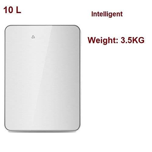 Preisvergleich Produktbild WYJW Sommerhaus Auto Mini Kühlschrank,  Schlafsaal Kühlung Heizung Auto kleine Kühlschrank Haushalt Single Door Kühlschrank-E-35x25x26cm (14x10x10)