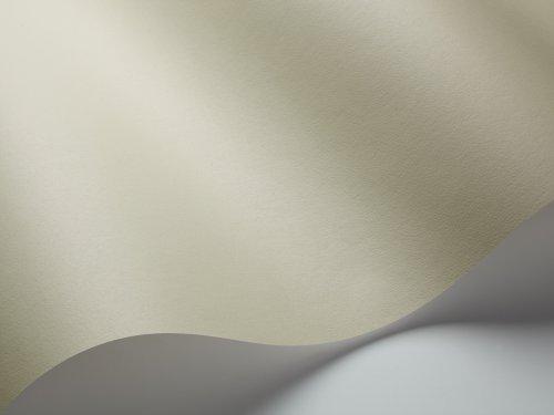 BorasTapeter 79400,53x 10,05m Tapete Linden grün Linden Wallpaper