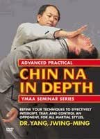 Advanced Practical Chin Na In-Depth [DVD]Region 0 playable anywhere on a dvd player