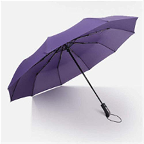 BBQBQ Paraguas Plegables Paraguas Plegable Diez Huesos