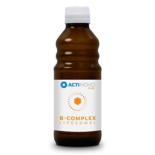 Liposomaler B-Komplex   hochdosiert   für deinen Stoffwechsel   250 ml   B1, B2, B3, B5, B6, Biotin, Folsäure, B12   hohe Bioverfügbarkeit   flüssig   ohne Zusätze   vegan -