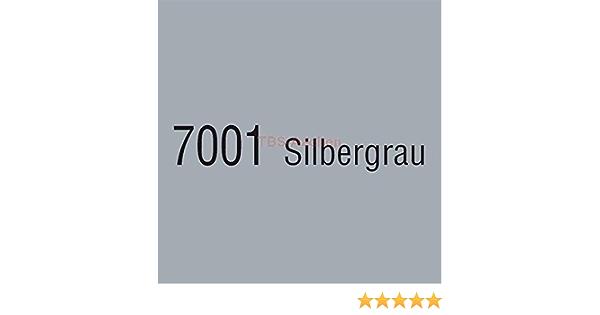 Brantho Korrux Nitrofest 5 Liter 7001 Silbergrau 21 80 Eur L Baumarkt