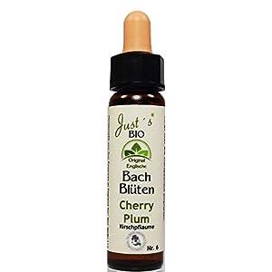 Cherry Plum Nr. 6 Just´s Original englische BIO Bachblüten Kirschpflaume Blütentherapie für Mensch und Tier …
