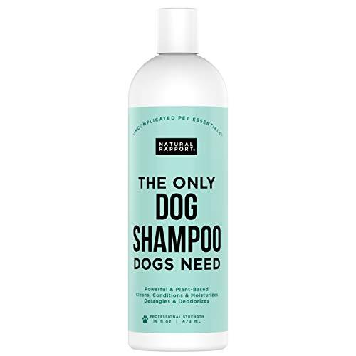 Natural Rapport Dog Shampoo & Conditioner - mit Haferflocken & Aloe - Complete 5-in-1 Natural Pet Wash Reinigt, Bedingungen, Desodoriert, spendet Feuchtigkeit und Entwirrt - Erstaunlich Frischer Geruch tilgt Wet Dog Geruch - 16 Fl Oz (473 ml) -