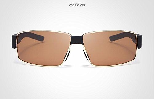 Yiph-Sunglass Sonnenbrillen Mode Männer polarisierte Sonnenbrillen Sonnenbrillen Fahren Gläser oculos de sol Masculino Brillen Schattierungen (Color : Golden)