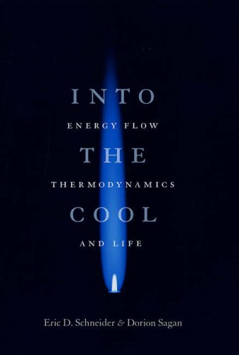 Into the Cool: Energy Flow, Thermodynamics, and Life by Eric D Schneider (2005-11-01)
