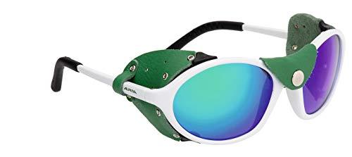 Alpina Sonnenbrille Tour Glacier SIBIRIA Sportbrille, white-green, One Size