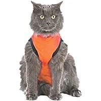 Medical Pet Shirt Katze Zebra-Muster - S