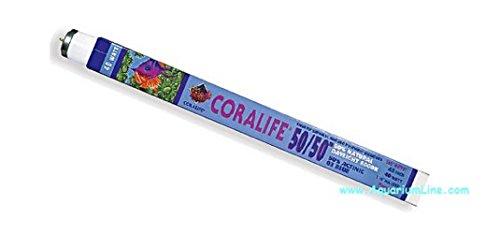 Coralife Néon T8 50/50 15 W