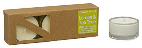 3x Beduftete Natural Lemon and Tea Tree Plant Wax Tealights in recycled...