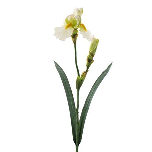 artplants Künstliche Iris, Creme, Deluxe, 70 cm – Kunstblume
