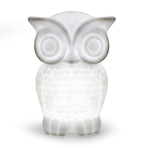 Serenity Eule Nachtlicht, Aappy Batteriebetriebene Porzellan Wise Minerva Tischlampe mit Timer für Schlafzimmer Dekor (kaltweiß, 2) Dekor Porzellan