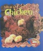 Life as a chicken