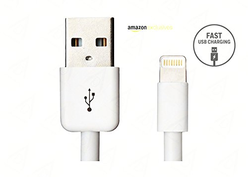AMAZING DEAL Fast lightning USB Data Charging Cable for iPhone, iPad Air iPad mini iPod nano and iPod Touch (White)