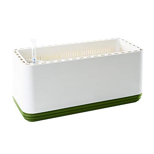 AIRY Box - Natürlicher Luftreiniger für Allergiker - Patentierter Pflanztopf als Filter gegen Schadstoffe, Haus-Staub, Pollen, Geruch, Allergie (grün)