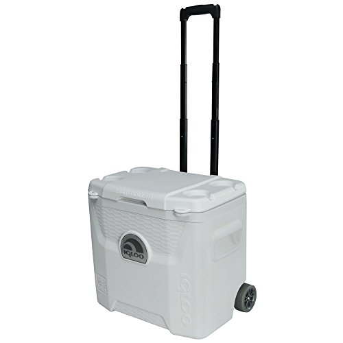 Igloo Products Corporation 00045929 Marine Ultra Quantum Roller Cooler, 28 quart by