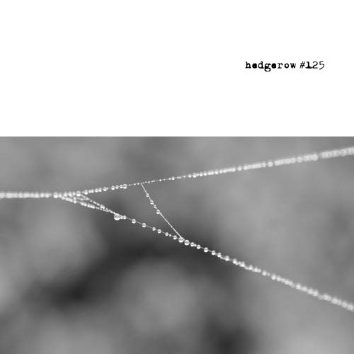 hedgerow #125: a journal of small poems por Caroline Skanne