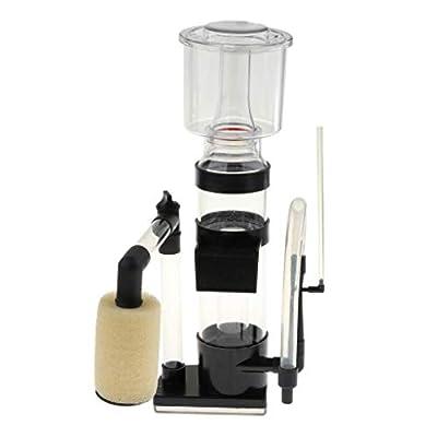 Backbayia Ecumeurs Doc Skimmer Filtre de Réservoir d'eau Interne Écumeur de Protéines Pompe Vacuum Nettoyage Eau Vide Gravier