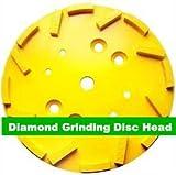 GOWE 25.40 cm Diamantschleifteller EDCO Blastrac SPE Beton für Winkelschleifer/250 mm/16 Segmente disk