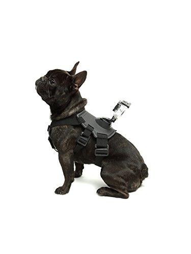 Cablaggio Montaggio per cane (DOG HARNESS) per GoPro - OVNI®