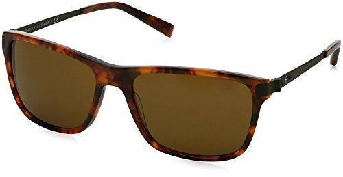 Ralph lauren 0rl81551773, occhiali da sole uomo, marrone (jerri havana/olivegreen), 57