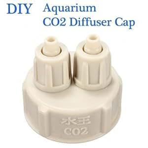 bouchon de la bouteille aquarium pour plantes bricolage diffuseur CO2 du système de générateur d'air