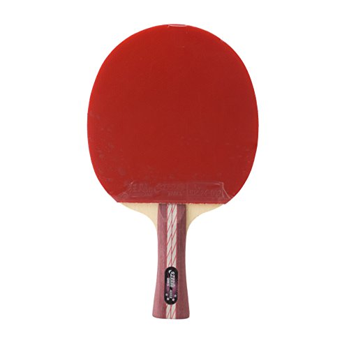 dhs-a4002-flaired-all-star-table-tennis-bat