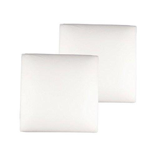 The White Willow mousse à mémoire oreiller decorative insert de coussin de 2 pcs intérieur Articles cadeaux de 18 \\