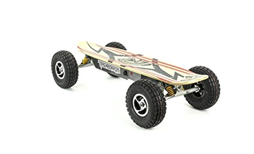 teslaboard extreme skateboard longboard lectrique 900 w. Black Bedroom Furniture Sets. Home Design Ideas