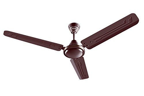Eveready Fab M 1200mm 3 Blades Ceiling Fan (brown)