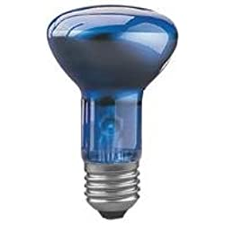 Paulmann Reflektorlampe R63 Pflanzenwachstum 40W E27 Bl
