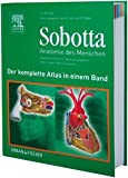 Sobotta - Anatomie des Menschen. Der komplette Atlas in einem Band: Allgemeine Anatomie, Bewegungsapparat, Innere Organe, Neuroanatomie